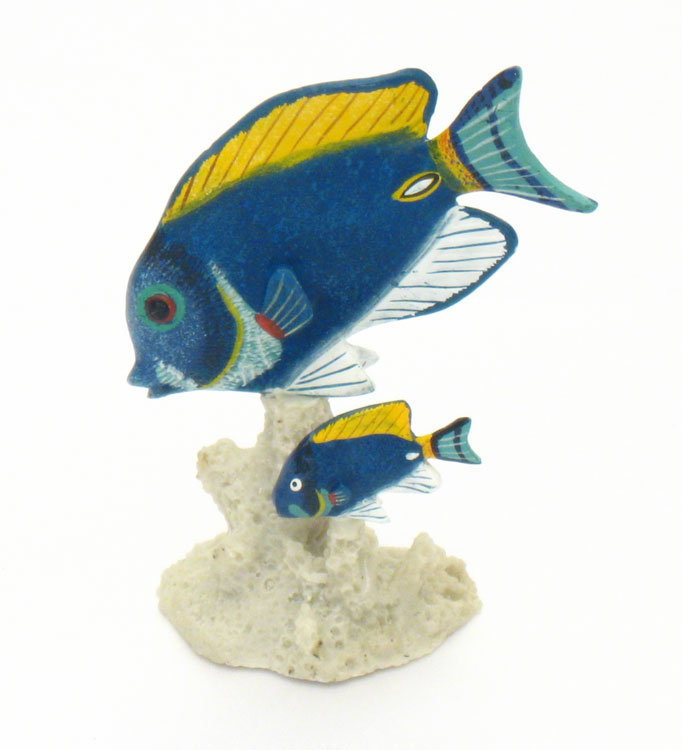 Powder blue tang elegant under the sea theme party decor for Blue tang fish price