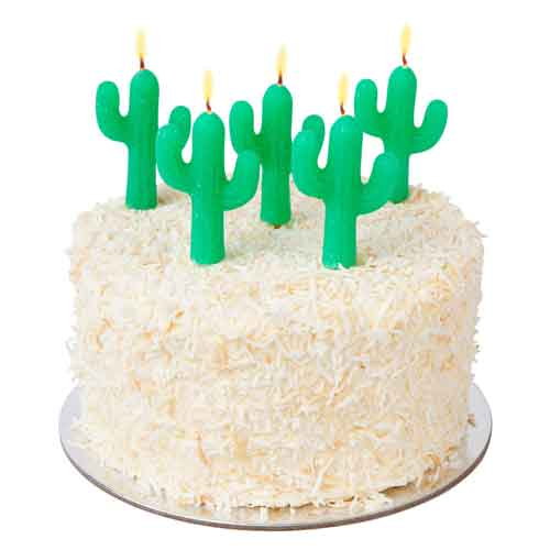 Saguaro Cactus Cake Candles Mexican Fiesta Birthday Party