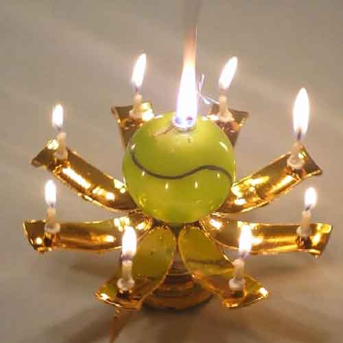 Amazing Musical Lotus Flower Birthday Candle Ships From