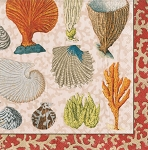 Coastal Curiosities Beverage Napkins (20)