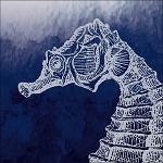 Blue Sperm Whale String Lights Ocean Beach & Underwater Theme Party Decorations