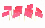 Hot Pink Flag Toothpicks (100)