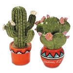 Blooming Cactus in Pots Salt & Pepper Set