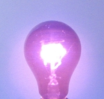 Bulbrite Purple Black Light Bulb - 75W
