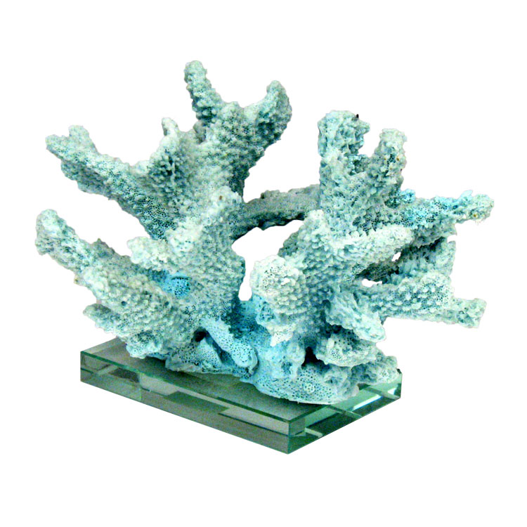 Ocean coral chunk centerpiece on glass base under the