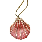 Natural Shell With Mini Pearls Coastal Christmas Ornament **CLEARANCE**