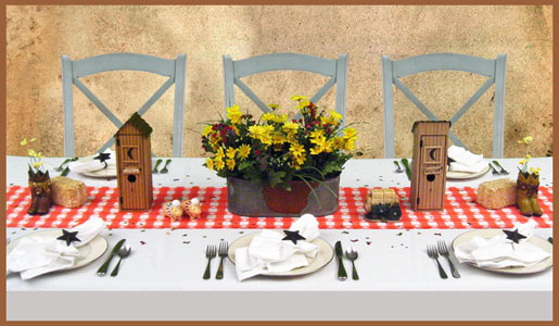 Country Western Theme Party Decorating Ideas