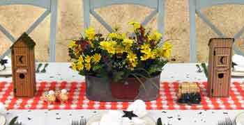 'Party Blog Main Photo' from the web at 'http://www.partyswizzle.com/assets/images/themegraphic/OrderGingham.jpg'