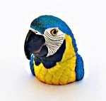 Parrot Head Box - Blue