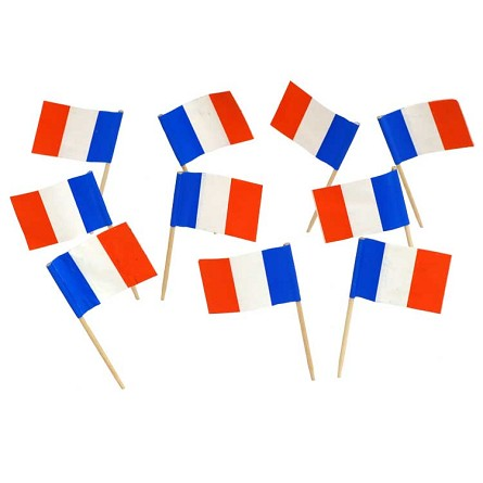 France | French Flag Toothpicks (100)