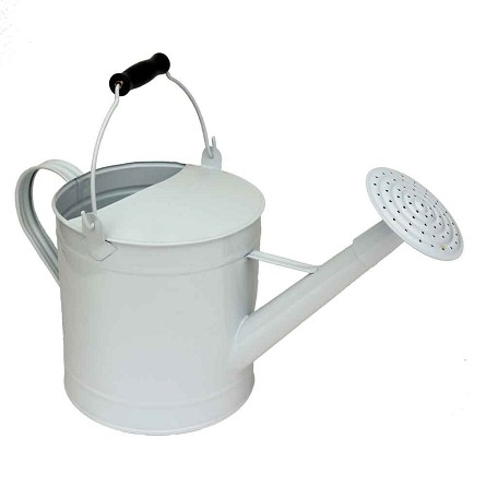 White Enamel Watering Can Vase Centerpiece