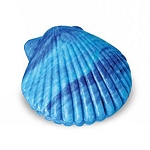 Turquoise Scallop/Clam Shell Soap