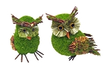 Small Green Mossy Owl - 2 styles **CLEARANCE**