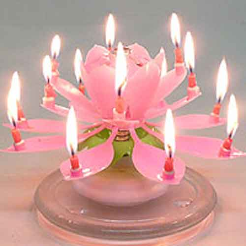 Amazing Musical Lotus Flower Birthday Candle
