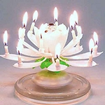 Amazing Musical Lotus Flower Birthday Candle