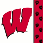 Wisconsin Badgers Beverage Napkins (20) **CLEARANCE**