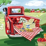 Americana Pick-up Picnic Beverage Napkins (20)