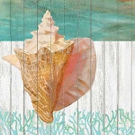 Waterside Conch Beverage Napkins (20)