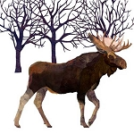 Winter Moose Napkins (20) - 2 sizes