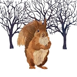 Winter Squirrel Paper Napkins (20) - 2 sizes