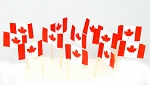 Canada | Canadian Flag Toothpicks (100)
