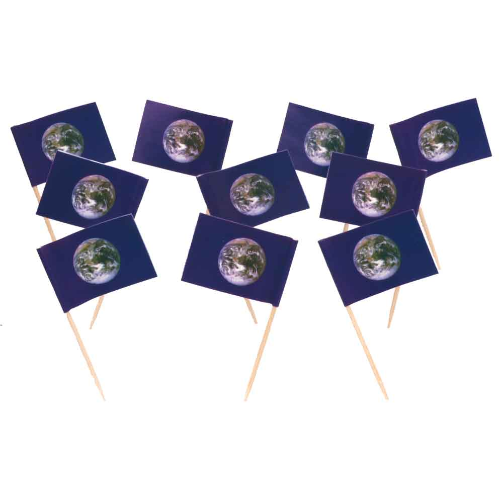 Earth | World Flag Toothpicks (100)