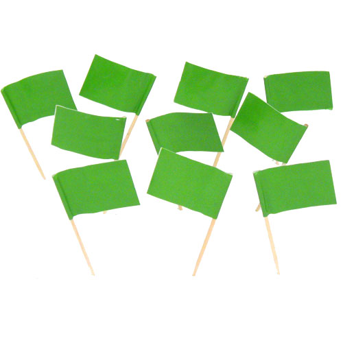 Green Flag Toothpicks (100)