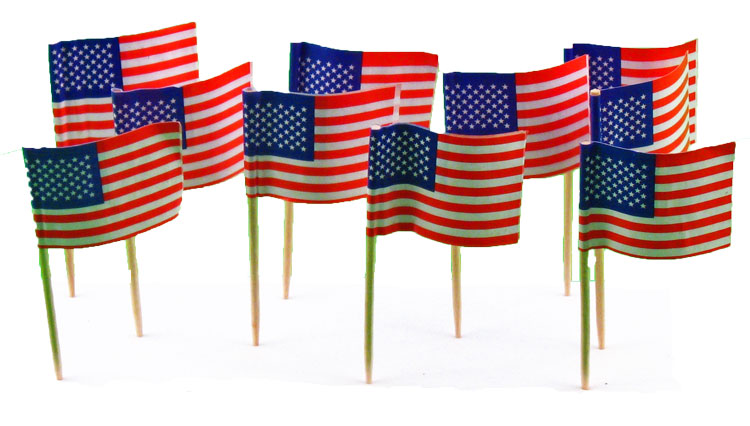USA | American Flag Toothpicks (100)