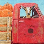 Fresh Pumpkins Beverage Napkins (20)