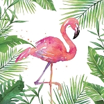 Tropical Flamingo Napkins (20) - 2 sizes