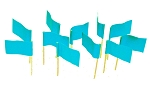 Light Blue Flag Toothpicks (100)