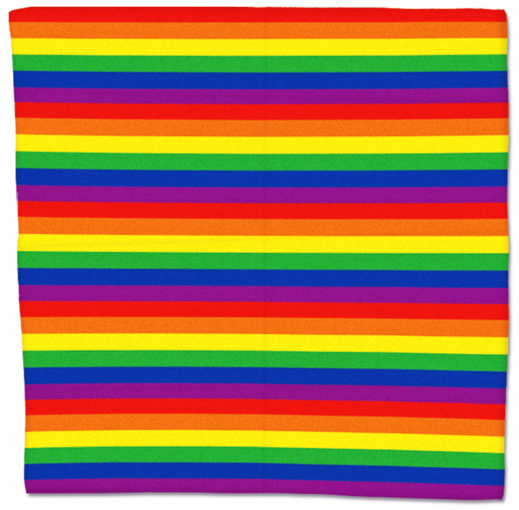 Gay Rainbow Flag Scarf/Bandana - 21.5