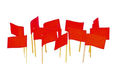 Red Flag Toothpicks (100)