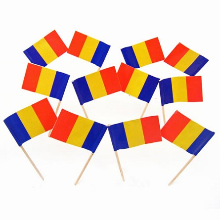 Romania | Romanian Flag Toothpicks (100)