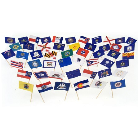 All 50 US State Flag Toothpicks (100)